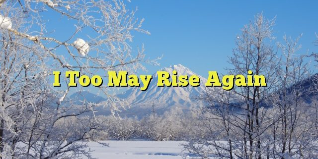 I Too May Rise Again